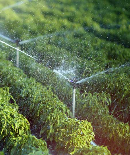 TTK Custom Services LLC Irrigation System Repair