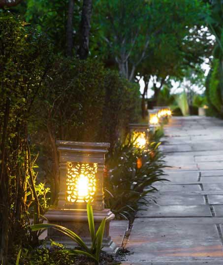 TTK Custom Services LLC Residential Landscape Lighting